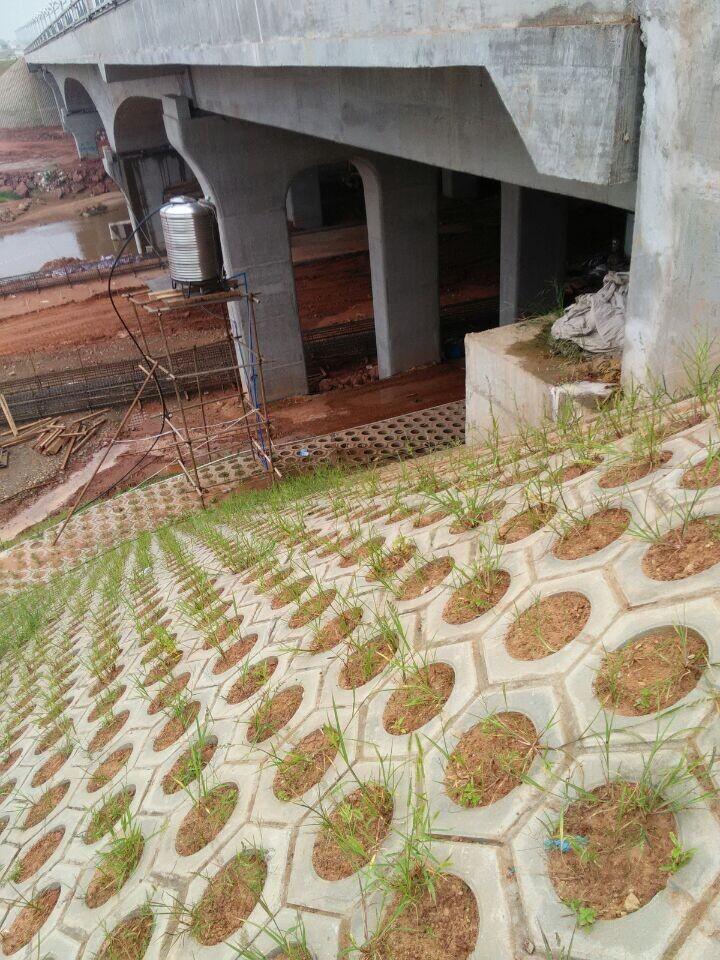 兴龙湖项目土建